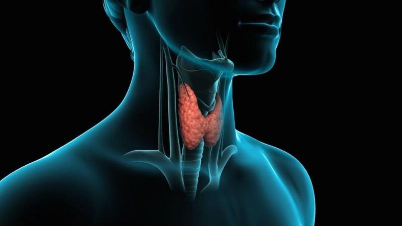 پرکاری تیروئید و علائم آن در بدن|کلینیک شبانه روزی آریا فولادشهر